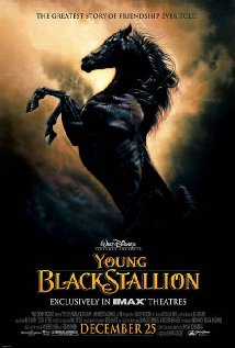 Young Black Stallion Movie Poster